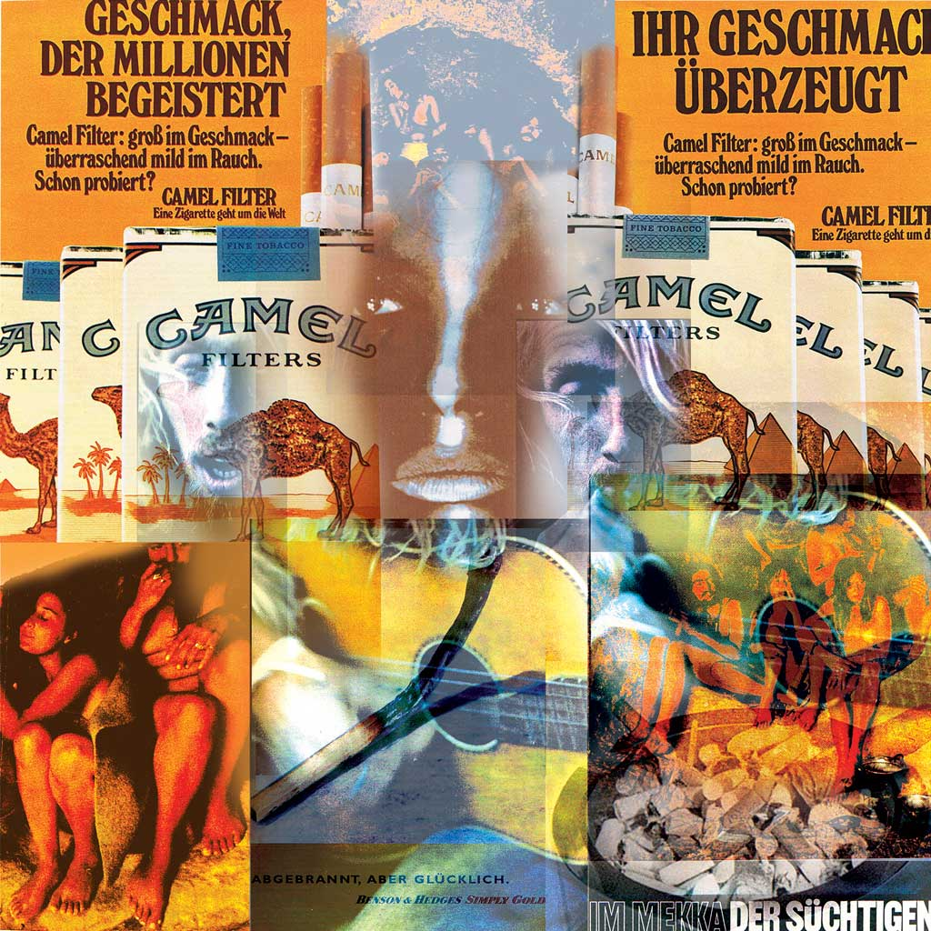 Composing_Collage Camel